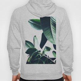 Ficus Elastica #26 #foliage #decor #art #society6 Hoody