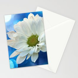 White Daisy on Blue Stationery Cards
