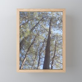 Look Up! Framed Mini Art Print
