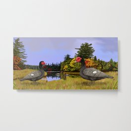 Blue Muscovy Ducks in Fall Metal Print