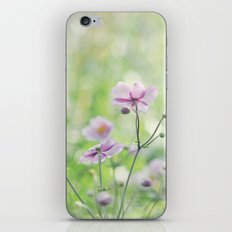 Anemones  iPhone & iPod Skin