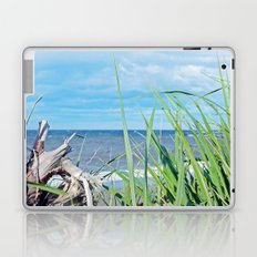 Through Grass and Driftwood Laptop & iPad Skin