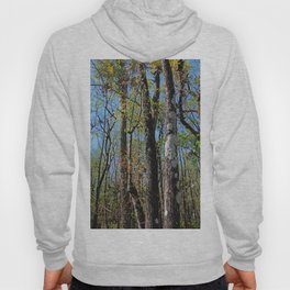 Cypress Poem Hoody
