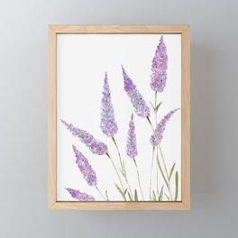 Lavander Framed Mini Art Print