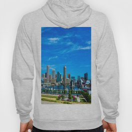 Inner Harbor from Federal Hill Hoody