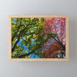 Beauty Above Framed Mini Art Print