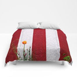 Temple Wall Comforters