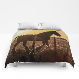 Wyoming Clydesdale Comforters