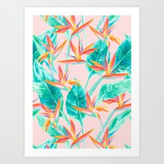 Birds of Paradise Blush Art Print