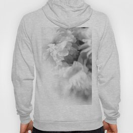 Blured white peonies Hoody