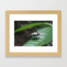 Bug Rainbow Framed Art Print