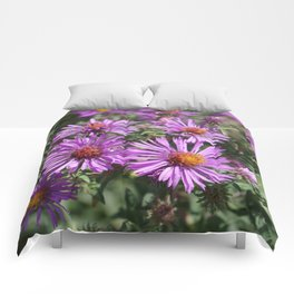 Autumn Amethyst - New England Aster flowers Comforters