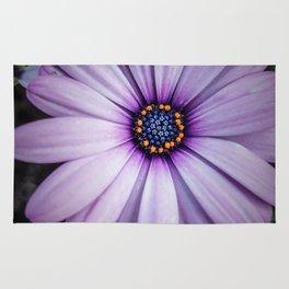 Violet Daisy Rug