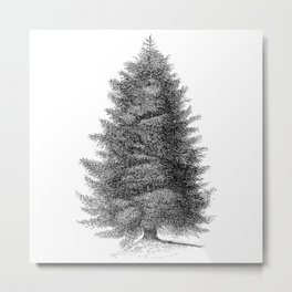 Blue spruce #society6 Metal Print