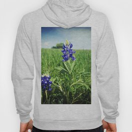 Texas Bluebonnet Flowers Hoody
