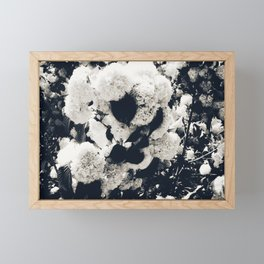 High Contrast Black and White Snowballs Framed Mini Art Print