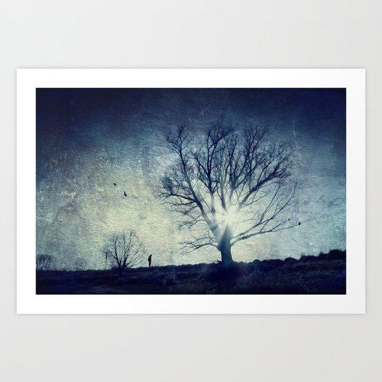 cold light of winter Art Print