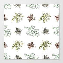 Quercus (greens) Canvas Print