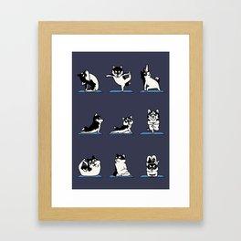Husky Yoga Framed Art Print
