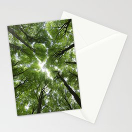 Beechwood Stationery Cards