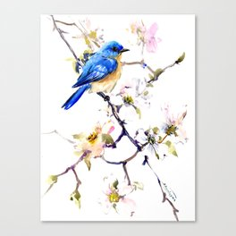 Bluebird and Dogwood, bird and flowers spring colors spring bird songbird design Canvas Print