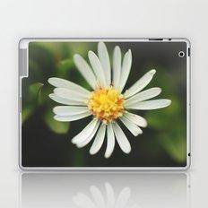 Radial Laptop & iPad Skin