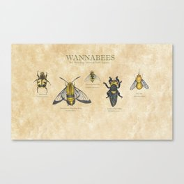 wannabees: Bee Mimicking Inects Canvas Print