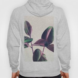 Pink and Green Iridescent Leaves Hoody
