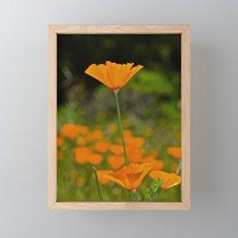 Tall Poppy Framed Mini Art Print