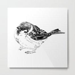 Fukura Sparrow Metal Print