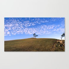 Tree on the island of Olkhon Canvas Print