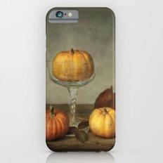 autumn still life Slim Case iPhone 6s