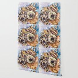 Shell Cluster Wallpaper