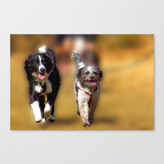 two dogs Canvas Print