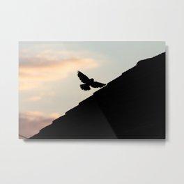 A Bird in Silhouette, Flight Arrested Metal Print