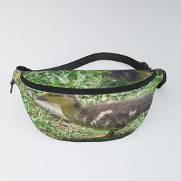 Leader - Colorful Fanny Pack