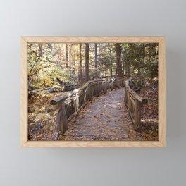 Fern Valley walking path Framed Mini Art Print