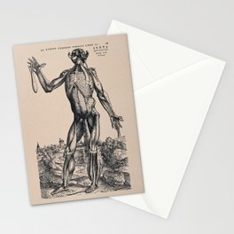 Muscleman, in a landscape, seen from the front. Photolithograph, 1940, after a woodcut, 1543. r Stationery Cards