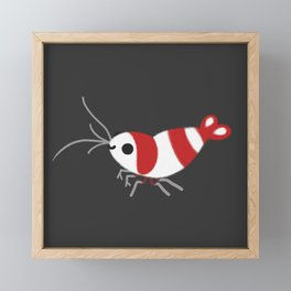 Crystal red shrimps Framed Mini Art Print