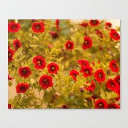 Red Flowers Vintage Canvas Print