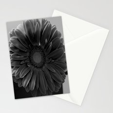 Grey Room Stationery Cards