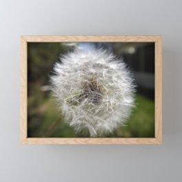 A Wish In The Making Framed Mini Art Print