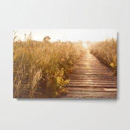 boardwalk and morass grass Metal Print