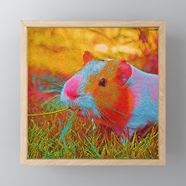 Popular Animals - Guinea Pig 1 Framed Mini Art Print
