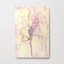 Montauk Autumn Forest Metal Print
