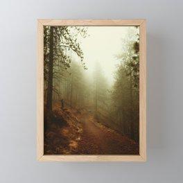 Autumn in Ponderosa Pines Forest Framed Mini Art Print