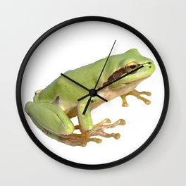 European Tree Frog Wall Clock