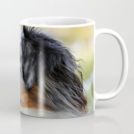 Australian Shepherd Blue Merle Dog Coffee Mug