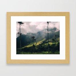 Salento Wax Palms Framed Art Print