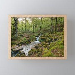 Green Stream Wide Framed Mini Art Print